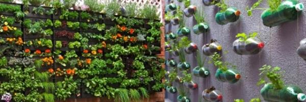 berkebun-rumahan-vertikal