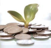 investor_saham